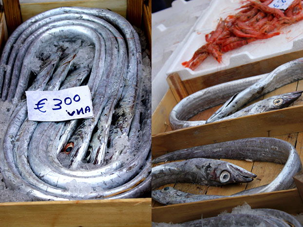 Weird fish Catania Market, Sicily