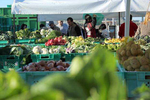 Malta farmers market Ta Qali