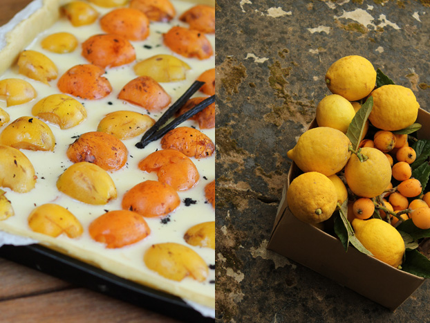 Japanese plums and tart