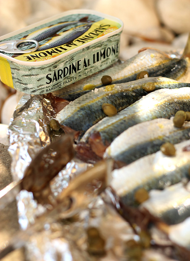 sardine pate