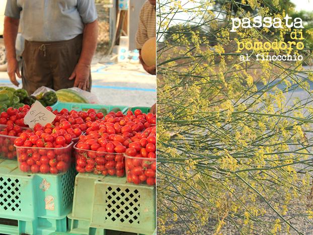 market and roadside fennel in Malta