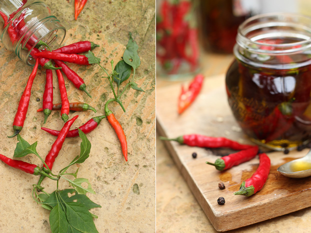 chillis being preserved in oil