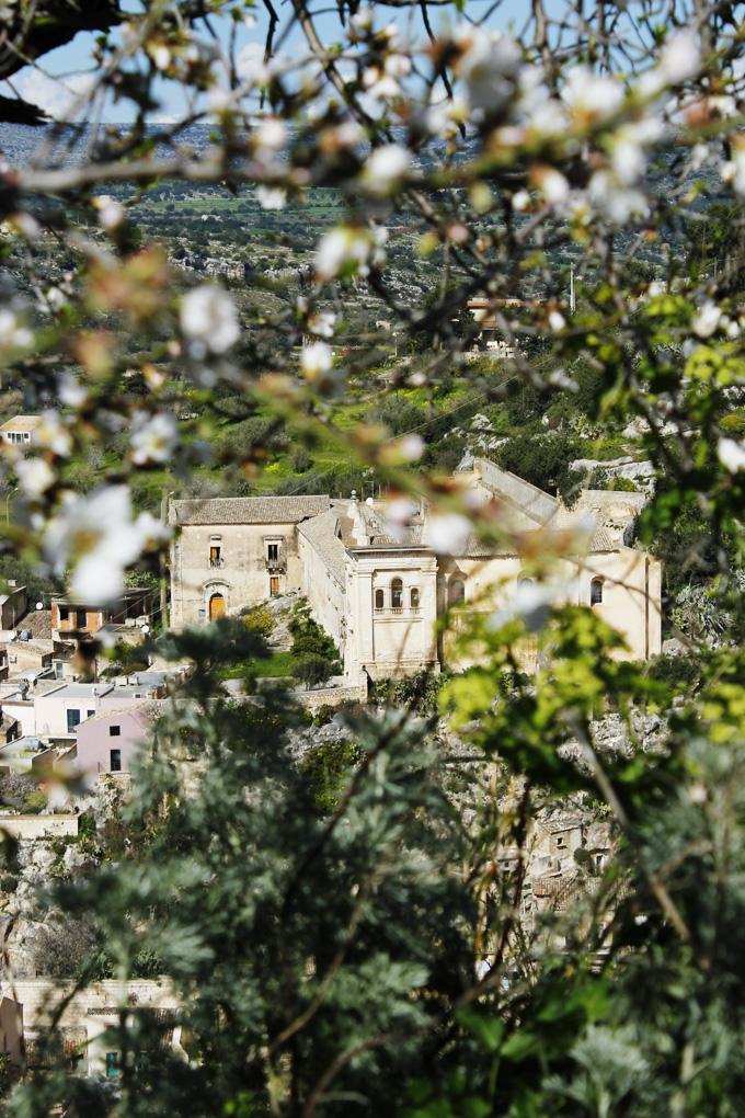 Almond blossom and church Scicli Sicily